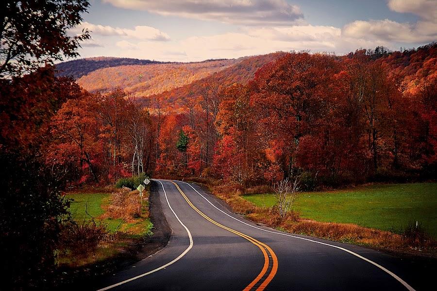 Lost Highway by Nancy Senchak - Landscapes Travel