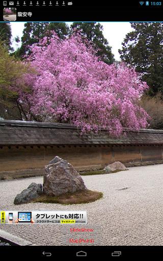 Ryoanji Temple JP045