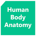 Human Body Anatomy icon