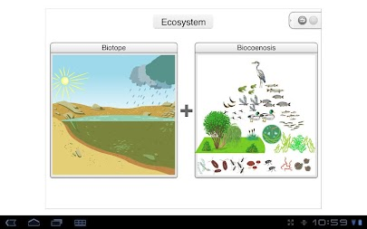 Pond ecosystem APK screenshot thumbnail 2