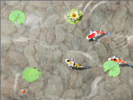 Download feed the koi fish kids game for pc for Koi fish games