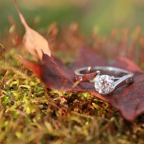 Engagement by Julia Nicely - Wedding Details ( ring, weddings, wedding, engagement ring, bride, engagement )