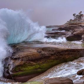 High Tide at Windansea by Eddie Yerkish - Landscapes Waterscapes ( water, shore, diego, spray, waterscape, california, waves, sea, ocean, windansea, beach, seascape, landscape, san, nature, outdoors, tide, shoreline, high, nikon, rocks, la jolla )
