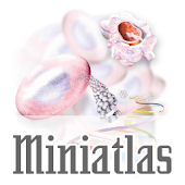 Miniatlas Oncology