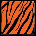 Banglalink Info 3G icon