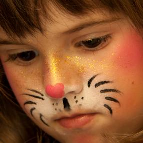 Cat by Mihai  Costea - Public Holidays Halloween ( , halloween, pumpkin, carved )