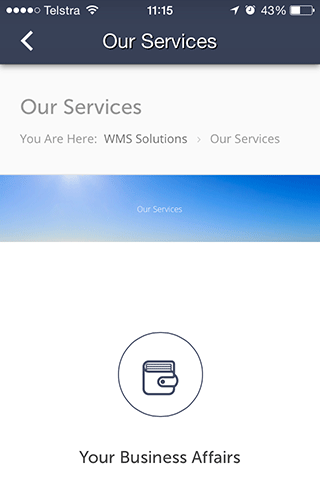WMS Chartered Accountants- screenshot