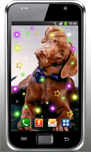 Friendly Dog live wallpaper