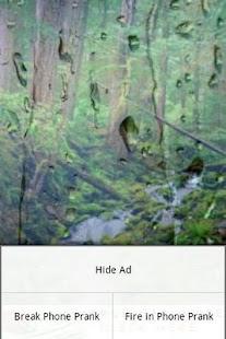 Rain Forest Sounds- screenshot thumbnail