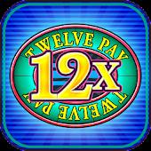 Twelve Pay Deluxe Slot