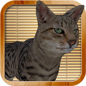 Kitty Cat Simulator for PC and MAC