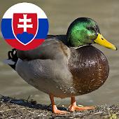 Zvuky slovenských zvierat
