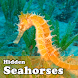Hidden Object Games-Seahorses