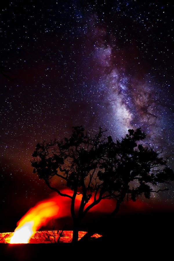 Volcano with a view by Joshua Lambus - Landscapes Starscapes ( volcano, tree, lava, stars, jagger, hawaii )