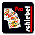 Officers Skat pro logo