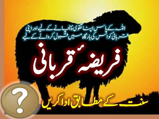 免費下載書籍APP|Qurbani - Sunnat ke Mutabiq app開箱文|APP開箱王