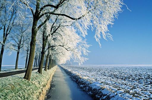 Winter landscape in the Netherlands.