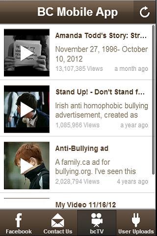 Bully Crackdown
