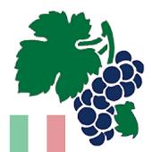Weinquiz Italien
