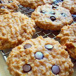 Peanut Butter Banana Oat Breakfast Cookies with Carob / Chocolate Chips.