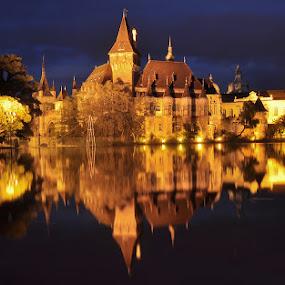 Una fiaba nel parco - Budapest by Luigi Alloni - Buildings & Architecture Public & Historical ( budapest night reflections castle lake park )