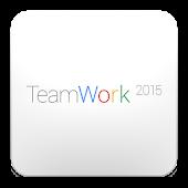 TeamWork 2015