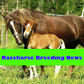 Racehorse Breeding News