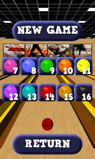 Bowling Alley 3D- screenshot thumbnail