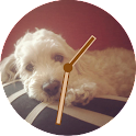 dog watch face icon