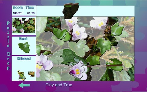 Puzzle Drop - Flower Set- screenshot thumbnail
