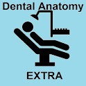 Dental Anatomy Extra