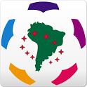 Libertadores Cup 2014 icon
