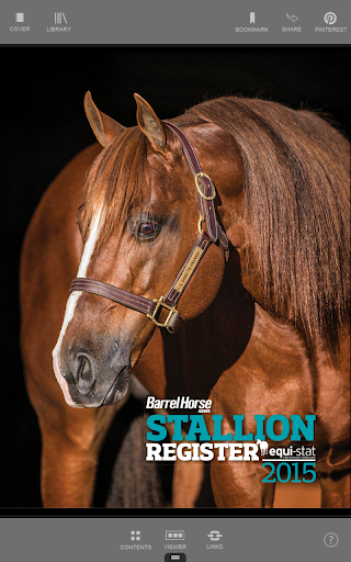Barrel Horse News Stallion