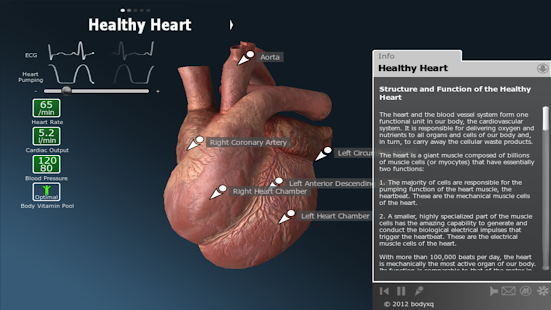 bodyxq heart- screenshot thumbnail