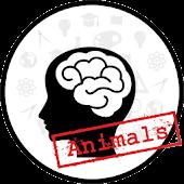 Memory 2 (Animals)