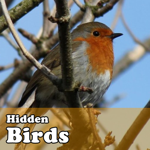 Hidden Object Games  Birds