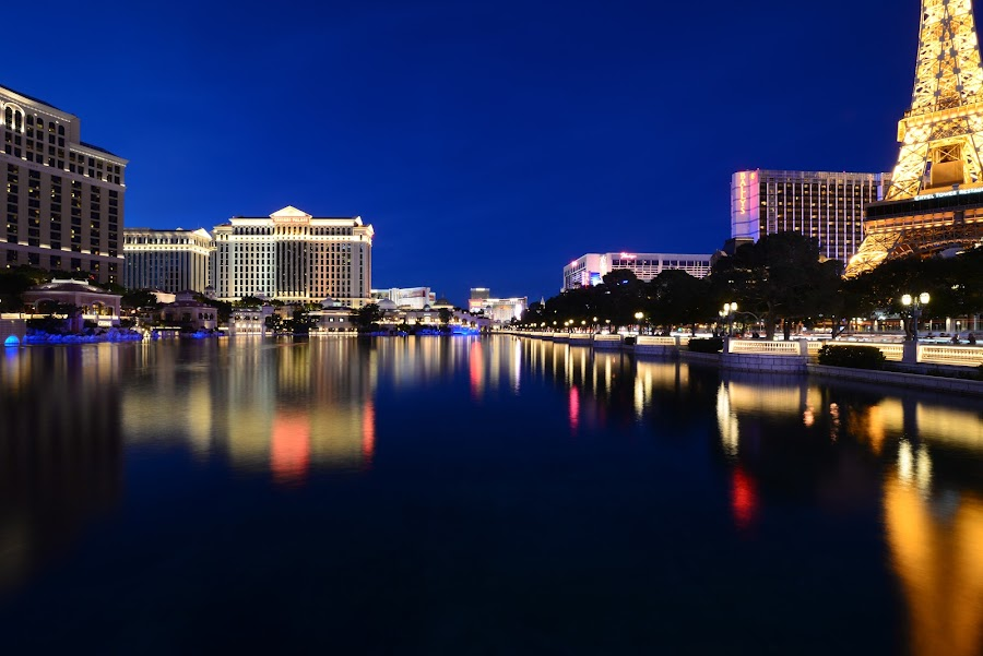 Lake Bellagio Blue Hour by Scott Thiel - City,  Street & Park  Night ( water, mood-lites, moods, colorful, blue hour, park at night, bulbs, usa, las vegas, nighttime in the city, eiffel tower, paris, lighting, night life, color, nevada, lake bellagio, street at night, long exposure, city at night, light, nightlife, mood factory,  )