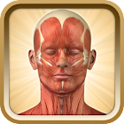 Know Your Body Lite icon