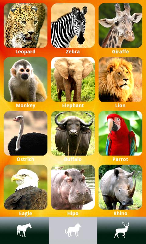 ZOOLA Free animal sounds game - screenshot