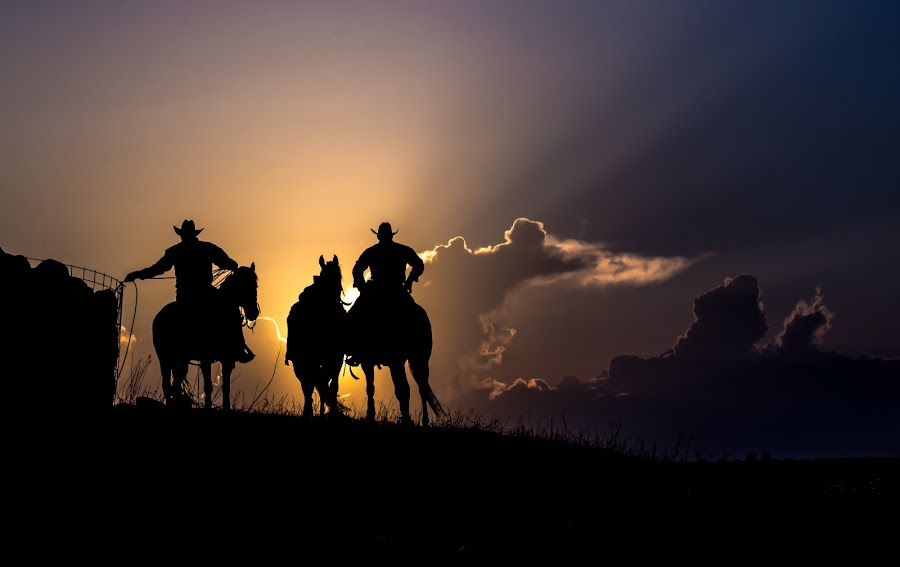 Evening Ropers by Gary Hanson - Sports & Fitness Rodeo/Bull Riding ( southdakota, ropers, sunset, cowboys, crystal springs, , golden hour, sunrise, #GARYFONGDRAMATICLIGHT, #WTFBOBDAVIS )