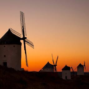by Alexandru Ciornea - Landscapes Sunsets & Sunrises (  )
