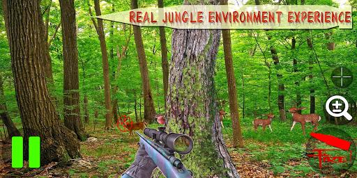 Hunting the Wild Deer - Hunter