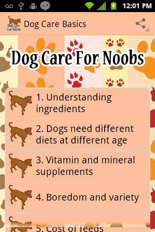 Basics of Dog Care