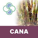 Cana Stoller logo