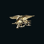 Official Navy SEAL Training icon