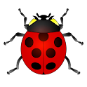 The ladybug game for kids icon
