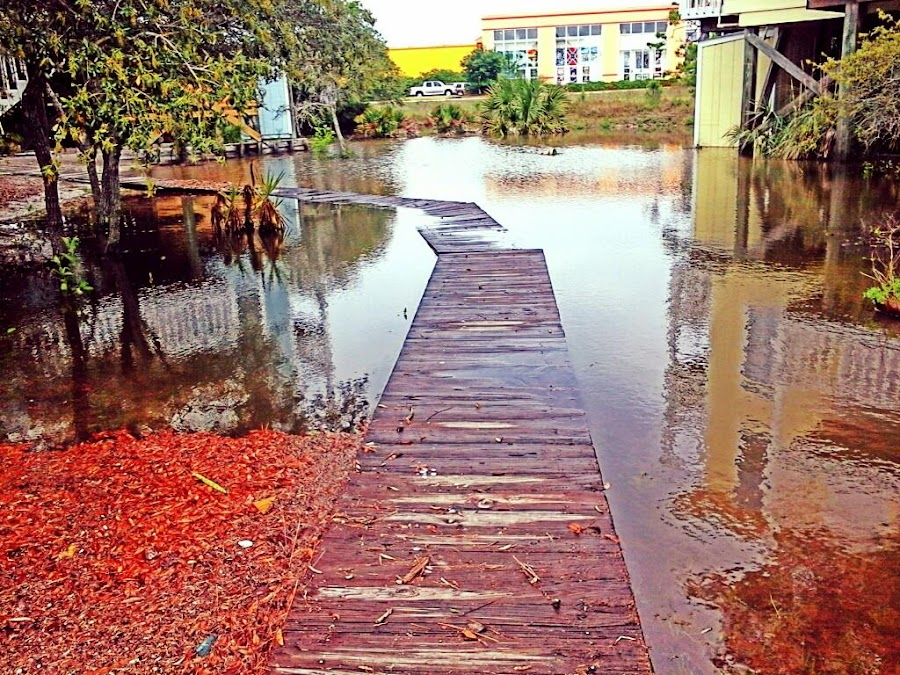 The boardwalk leading to Apartment 6 after the epic thunderstorm. by Yza Kia - Uncategorized All Uncategorized ( boardwalk )