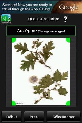 Quel est cet arbre ? - screenshot
