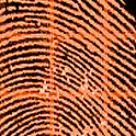 Orange Fingerprint Scanner LWP logo