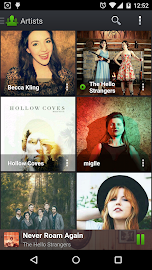 PlayerPro Music Player Screenshot 8